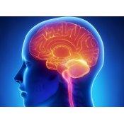 Νευρολόγος